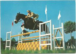 AA2833 Esercito Italiano - Sport - Equitazione / Non Viaggiata - Altri