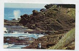 AK 04243 USA - Hawaii - Oahu - World Famous Blow Hole - Oahu