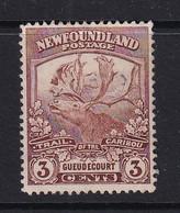 Newfoundland: 1919   Newfoundland Contingent   SG132     3c  [Perf: 14 X 13.9]    Used - 1908-1947