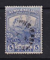 Newfoundland: 1919   Newfoundland Contingent   SG134     5c  [Perf: 14 X 13.9]    Used - 1908-1947