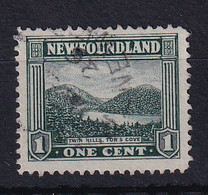 Newfoundland: 1923/24   Pictorial   SG149     1c    Used - 1908-1947