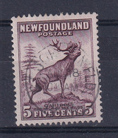 Newfoundland: 1932   Pictorial  SG213     5c  Maroon    Used - 1908-1947