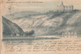 GODINNE  / SANATORIUM DE MONT SUR GODINNE  1901 - Yvoir