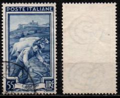 Italia Al Lavoro 55 Lire Filigrana Ruota 1 Destra Bassa - 1946-60: Used