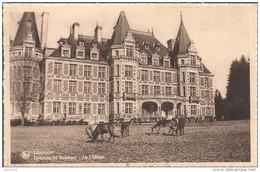 LIBIN ..-- ROUMONT . Château Du Baron COPPE . - Libin