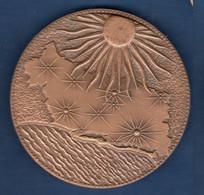 £ France Hérault (34) Jeton Médaille Bronze ..  Conseil General De L'Hérault .. Superbe .. - Professionnels / De Société