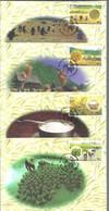 MAXIMAS 1999 - Maximum Cards