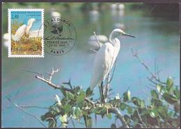Frankrijk 1995, J. Audubon, Birds - Briefe U. Dokumente