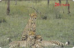 Italy,  F-IT-DEL-ANI-0008, Conoscere Gli Animali - Cheetah N.08, 2 Scans.   NB : FAKE Italy - Altri