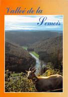 CPM - Vallée De La Semois - Vresse-sur-Semois