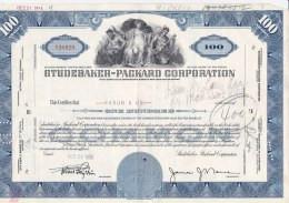 Shares:    Studebaker - Packard Corporation - 100 Shares From 1984   (LAR7-24) - Sin Clasificación
