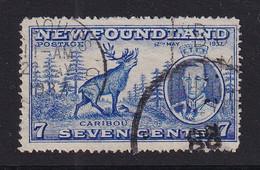 Newfoundland: 1937   Coronation Issue  SG259   7c  [Perf: 14]   Used - 1908-1947
