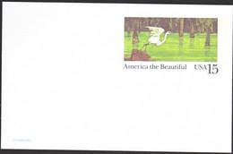 Amerika 1989, Postcard Unused, Bird - 1981-00