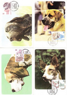 4 Maximumkarten Motiv Hund, Madrid 1983 (5418) - 1981-90 Storia Postale