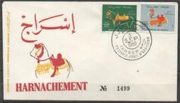 MAROC 1980 FDC CARTE 1er JOUR Y&T N° 858 ET 859 - Marokko (1956-...)