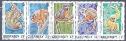GUERNSEY   (WER4699) - Guernsey