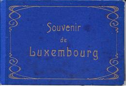 Dépliant Touristique: Souvenir De Luxembourg - Carnet De 12 Photos En Accordéon Avec Légende - Format CPA - Tourism Brochures