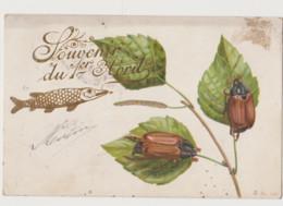 Carte Fantaisie   / 2 Hannetons Sur Une Branche ; Poisson D'avril - Insects