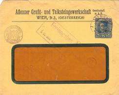 "Enveloppe Affranchie à 25 Heller. Obl. à Wien 06/06/1918 + Tamponner ""Freigegeben"" + K.U.K. Kriegsministerium. - Covers & Documents"