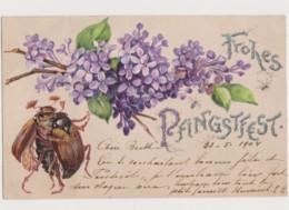 Carte Fantaisie Gaufrée / Hannetons Humanisés ( Couple Dansant ) ; Lilas - Insects