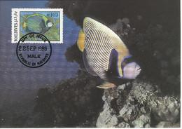 26127)  Maldives  WWF 1986 Fish Maxi Postcard Cover - Maldiven (1965-...)