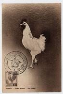 Algérie III° Congrès International D'Agrumiculture 8 Mai 1954 ALGER Sur N° Yv 221, CM Carte Maximum - Maximum Cards