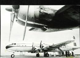 ►   KLM - Douglas  DC 6-8 - 1950/60s (En L'état) - 1946-....: Modern Era