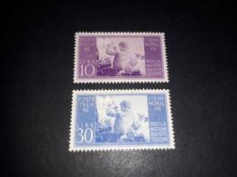 """ITAMIX36 REP. ITALIANA 1948 PROCLAMAZIONE DELLA COSTITUZIONE 2 VALORI """"XX"""" - Paketmarken"""
