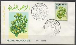 MAROC 1987 FDC Enveloppe Oblitération 1er JOUR Y&T N° 1031 - Marokko (1956-...)