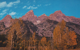 Grand Teton National Park ,Wyoming, USA, Middle Teton Grand Teton Mount Owen And Mount Teewinot. Photo Laura Dexter 104 - Unclassified