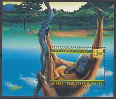 UNO GENF  Block 10, Postfrisch **, 50 Jahre WHO, 1998, Orang-Utan - Blocks & Sheetlets