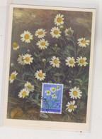 YUGOSLAVIA, 1956 LJUTOMER Flora Flowers Nice Maximum Card - Briefe U. Dokumente