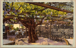 California San Gabriel The Mother Grapevine - Other