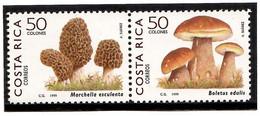 Costa Rica 1999 . Mushrooms. 2v. Michel # 1509-1510 - Costa Rica