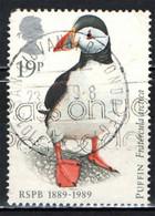 GRAN BRETAGNA - 1989 - PROTEZIONE DEGLI UCCELLI - PULCINELLA DI MARE - FRATERCULA ARTICA - PUFFIN - USATO - Used Stamps