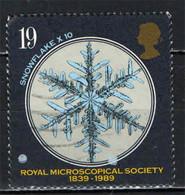 GRAN BRETAGNA - 1989 - SOCIETA' REALE DI MICROSCOPIA - CRISTALLO DI NEVE - USATO - Used Stamps