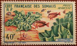 DF50500/1303 - 1963 - CÔTE DES SOMALIS - POSTE AERIENNE - N°34 ☉ - Used Stamps