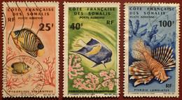 DF50500/1306 - 1966 - CÔTE DES SOMALIS - POSTE AERIENNE - N°50-51-55 ☉ - Cote (2020) : 38,50 € - Used Stamps