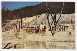 AK 05263 USA - Wyoming - Yellowstone National Park - Angel Terrace - Yellowstone