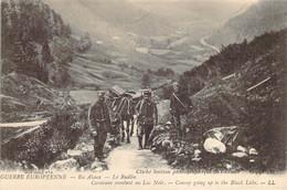 Caravane De Mulet Montant Au Lac Noir Dans Le Rudlin En Alsace Guerre 1914 - Personen