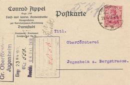DARMSTADT  - 1919  ,  Perfins / Firmenlochung  -  CONRAD APPEL  Samenwerke  -  Karte Nach Jungenheim - Covers & Documents