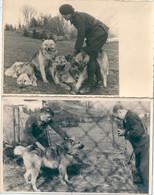 Photo Originale Lot De 2 Photos Chien Berger Allemand Photographe Photographié Miitaires Carte-photo - War, Military
