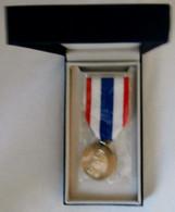 Médaille De La Protection Du Territoire Dans Son écrin Arthus Bertrand - Frankreich