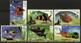 CUBA 2015 FAUNA Animals AQUARIUM FISH - Fine Set MNH - Unused Stamps