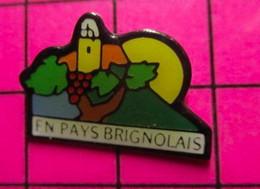 915c Pin's Pins / Beau Et Rare / THEME : VILLES / BRIGNOLES VIN VIGNE RAISIN EN PAYS BRIGNOLAIS - Cities