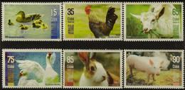CUBA 2019 FAUNA Domestic Animals - Fine Set MNH - Unused Stamps