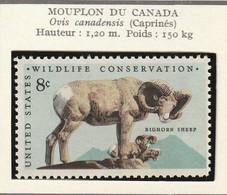ETATS-UNIS - Faune, Phoque, Mouflon, Wildlife Conservation - Y&T N° 963-966 - 1972 - MNH - Ungebraucht