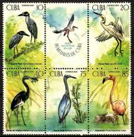 CUBA 2020 FAUNA Animals WATER BIRDS - Fine Set MNH - Unused Stamps
