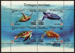 CUBA 2020 FAUNA Animals SEA TURTLES - Fine S/S MNH - Unused Stamps