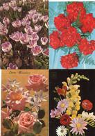 8 Oude Kaarten Bloemen In Vaas / Korf / Boeket - Old Flower Cards - Vieux Cartes Avec Fleurs                  FLOW6 - Flowers